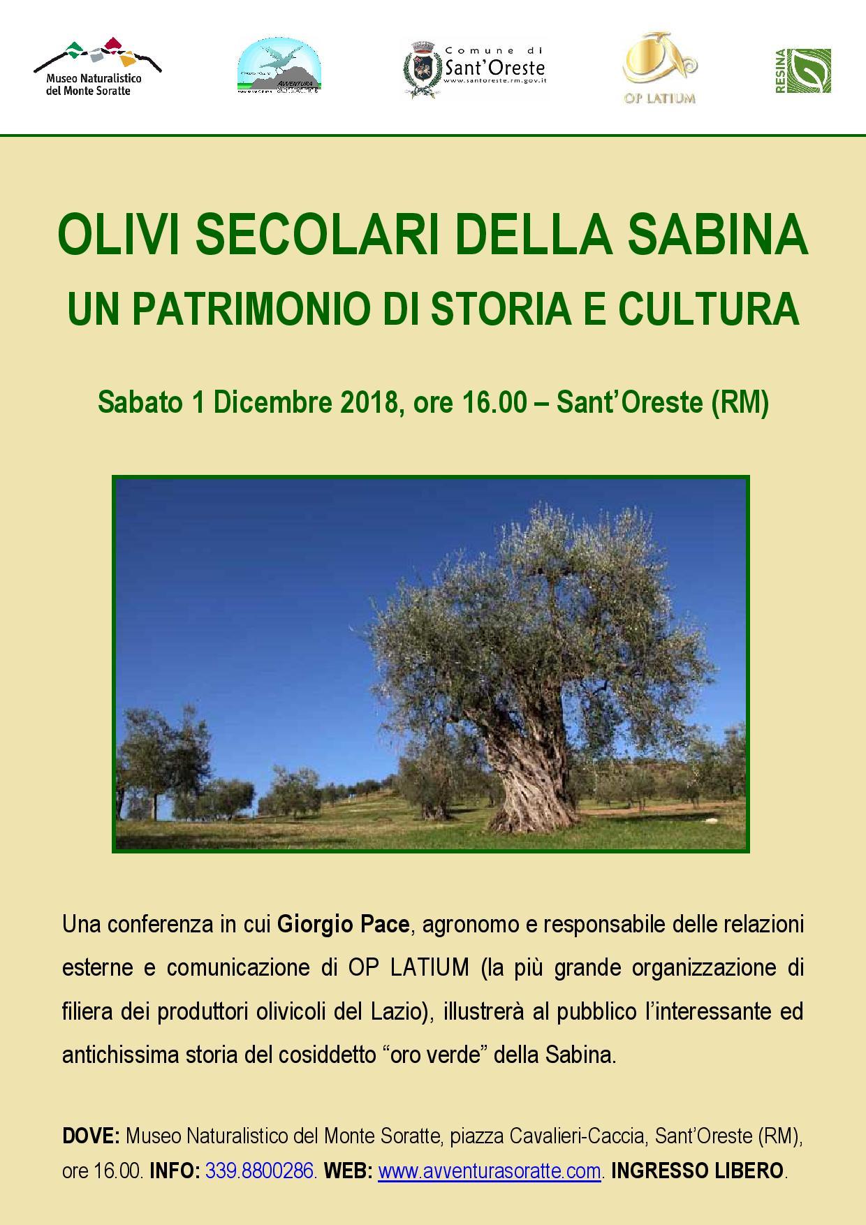 Olivi secolari della Sabina: un patrimonio di storia e cultura - eventi in sabina