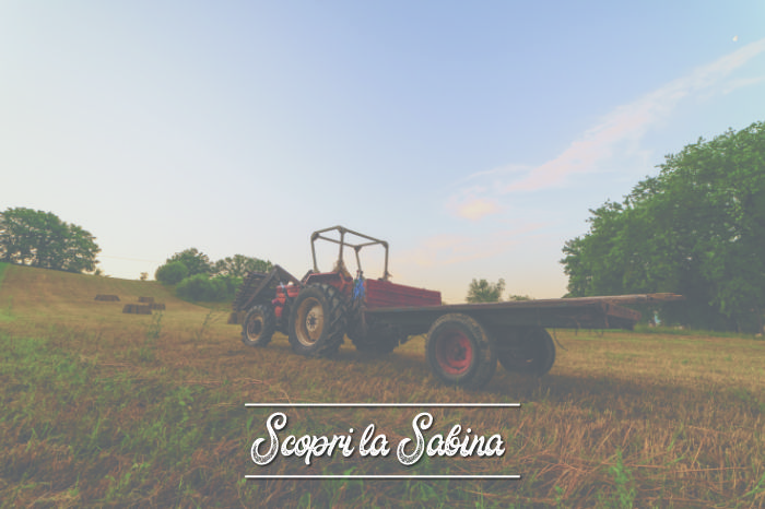 Aziende agricole: dove nasce il biologico