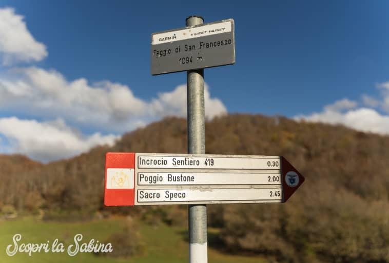 Cammino San Francesco Faggio