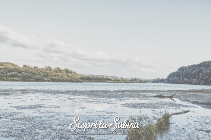 Riserva Naturale Regionale Nazzano Tevere-Farfa (Poggio Mirteto Scalo) - cosa vedere in sabina