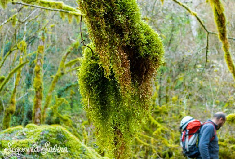 trekking lazio rieti sabina revotano