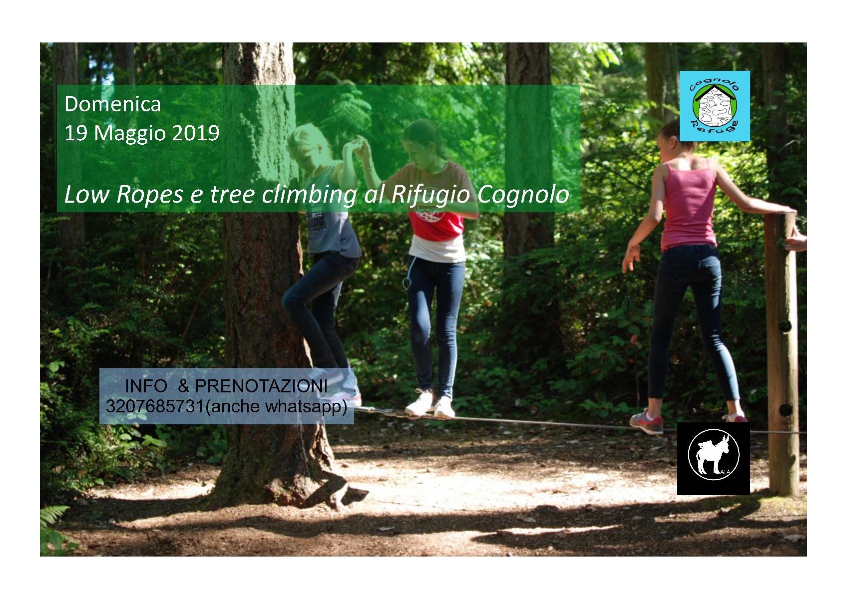 Low ropes and tree climbing al Rifugio Cognolo - eventi in sabina