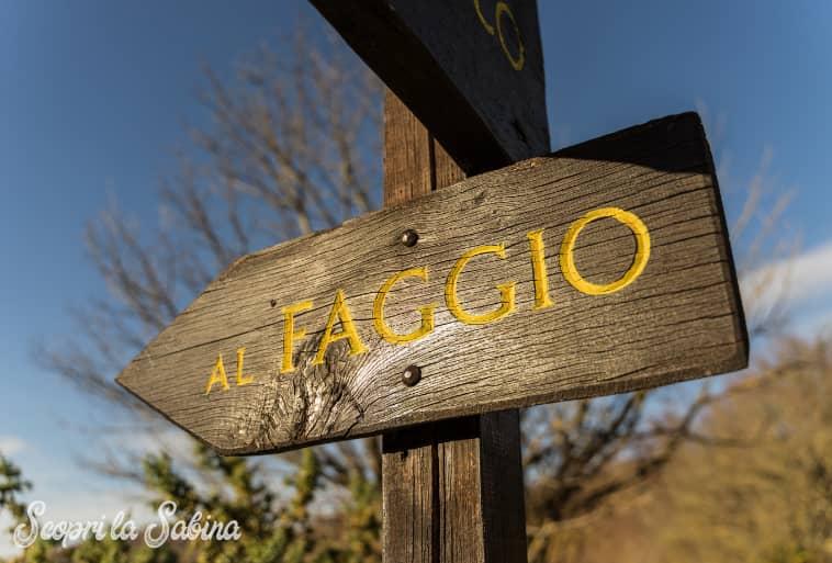Sentieri San Francesco Faggio
