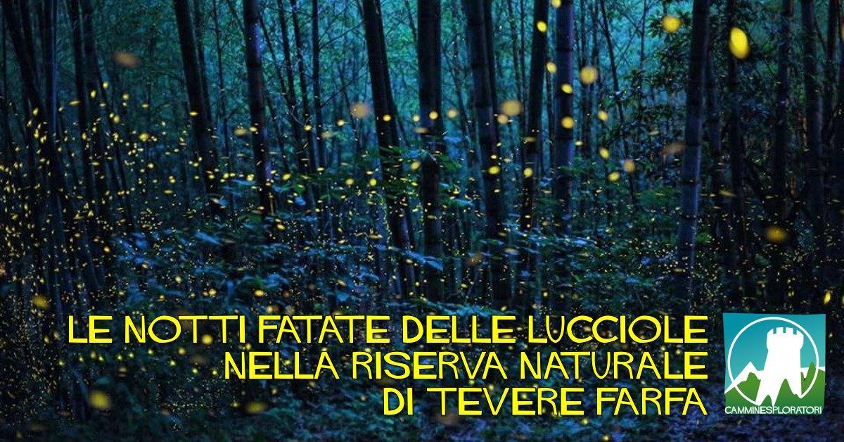 Le notti fatate delle lucciole nella Riserva Naturale Tevere Farfa - eventi in sabina